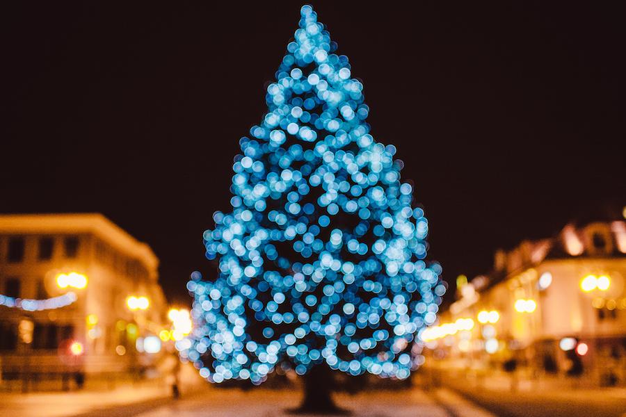 Où voir les sapins de Noël de Washington, DC
